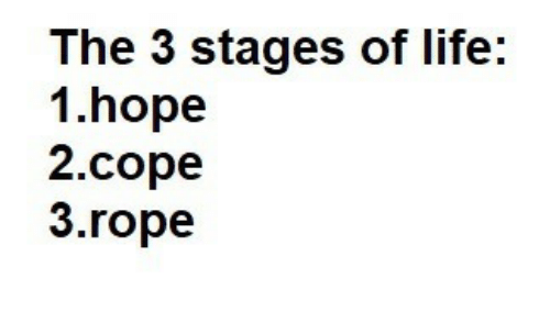 cope: The 3 stages of life:  1.hope  2.cope  3.rope