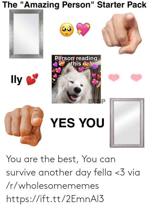 """Wholesomememes: The """"Amazing Person"""" Starter Pack  Person reading  this  Ily  BISP  YES YOU You are the best, You can survive another day fella <3 via /r/wholesomememes https://ift.tt/2EmnAl3"""