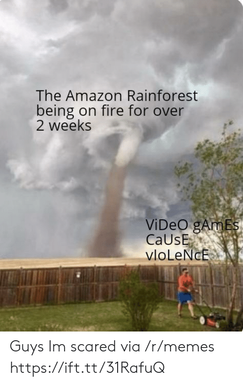 Amazon, Fire, and Memes: The Amazon Rainforest  being on fire for over  2 weeks  ViDeO gAmEs  CaUsE  vloLeNcE Guys Im scared via /r/memes https://ift.tt/31RafuQ