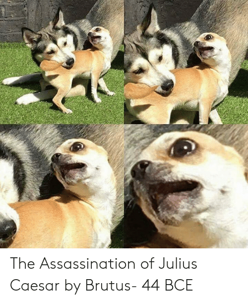 Assassination: The Assassination of Julius Caesar by Brutus- 44 BCE