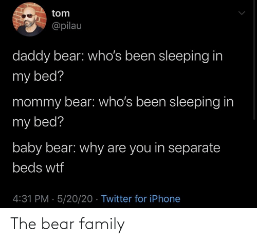 family: The bear family