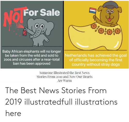Here:   The Best News Stories From 2019 illustratedfull illustrations here
