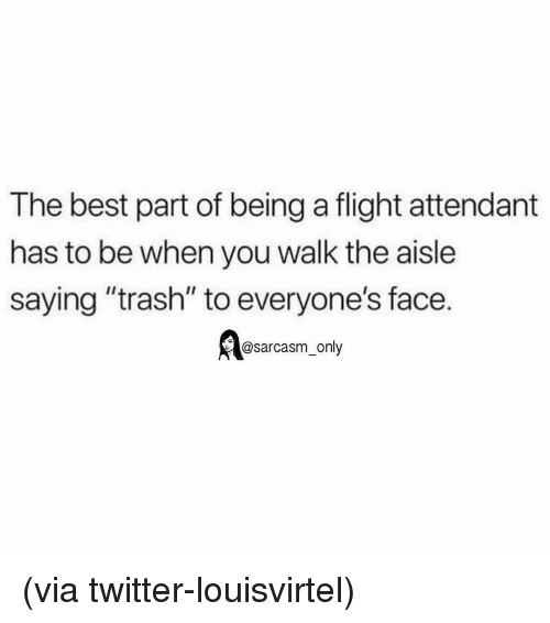 """Funny, Memes, and Trash: The best part of being a flight attendant  has to be when you walk the aisle  saying """"trash"""" to everyone's face.  @sarcasm_only (via twitter-louisvirtel)"""
