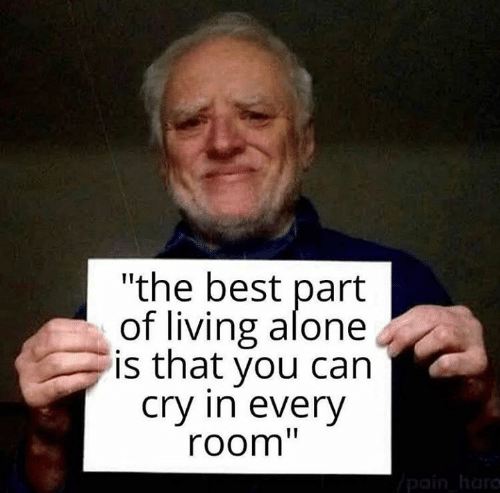 """Being Alone, Memes, and Best: """"the best part  of living alone  is that you can  Cry in everV  room"""""""