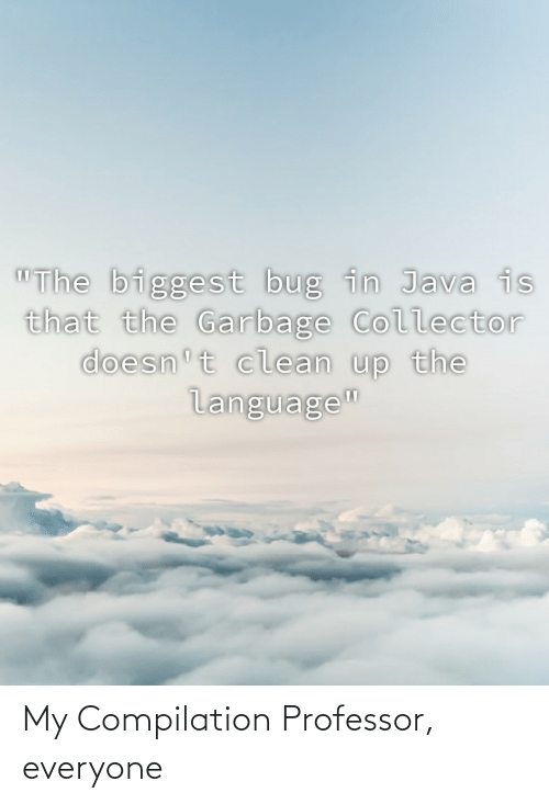 """clean: """"The biggest bug in Java is  that the Garbage Collector  doesn't clean up the  language"""" My Compilation Professor, everyone"""