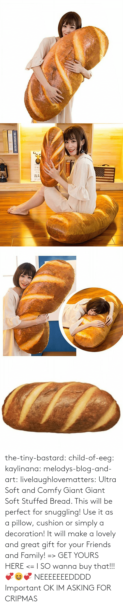 Decoration: THE CATCHER IN THE RYE the-tiny-bastard:  child-of-eeg:  kaylinana: melodys-blog-and-art:  livelaughlovematters:  Ultra Soft and Comfy Giant Giant Soft Stuffed Bread. This will be perfect for snuggling! Use it as a pillow, cushion or simply a decoration! It will make a lovely and great gift for your Friends and Family! => GET YOURS HERE <=   I SO wanna buy that!!! 💞😆💞   NEEEEEEEDDDD   Important  OK IM ASKING FOR CRIPMAS