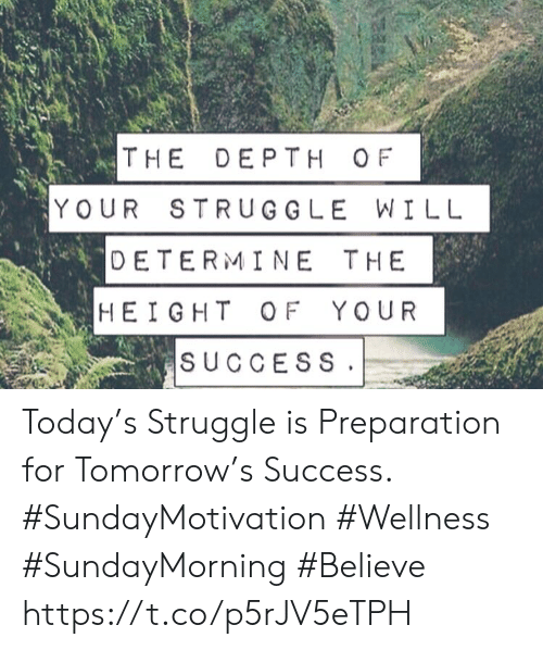 Struggle, Today, and Tomorrow: THE DEPTH OF  YOUR STRUGGLE WILL  DETERMINE THE  |HEIGHT OF YOUR  SUCCESS Today's Struggle is Preparation  for Tomorrow's Success.   #SundayMotivation #Wellness  #SundayMorning #Believe https://t.co/p5rJV5eTPH