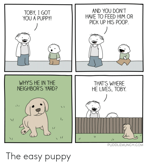 easy: The easy puppy