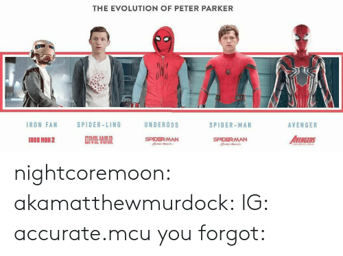 Evolution Of: THE EVOLUTION OF PETER PARKER  IRON FAN  SPIDER-LING  UNDEROOS  SPIDER-MAN  AVENGER  IRON MRN2  SPIDERMAN  AVENGERS  SPIDERMAN nightcoremoon:  akamatthewmurdock:  IG: accurate.mcu  you forgot: