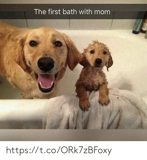 Memes, Mom, and 🤖: The first bath with mom https://t.co/ORk7zBFoxy