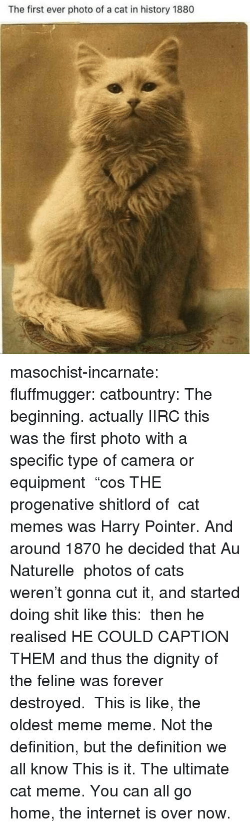 "Cats, Internet, and Meme: The first ever photo of a cat in history 1880 masochist-incarnate:  fluffmugger:  catbountry: The beginning. actually IIRC this was the first photo with a specific type of camera or equipment  ""cos THE progenative shitlord of  cat memes was Harry Pointer. And around 1870 he decided that Au Naturelle  photos of cats weren't gonna cut it, and started doing shit like this:  then he realised HE COULD CAPTION THEM and thus the dignity of the feline was forever destroyed.    This is like, the oldest meme meme. Not the definition, but the definition we all know   This is it. The ultimate cat meme. You can all go home, the internet is over now."