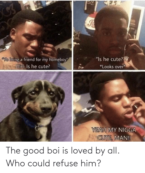 all: The good boi is loved by all. Who could refuse him?