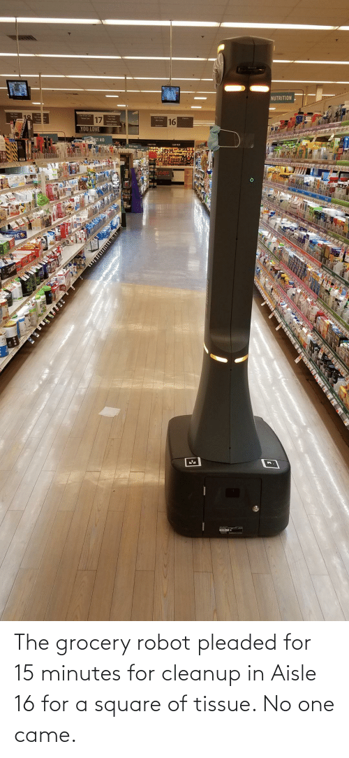 Square: The grocery robot pleaded for 15 minutes for cleanup in Aisle 16 for a square of tissue. No one came.