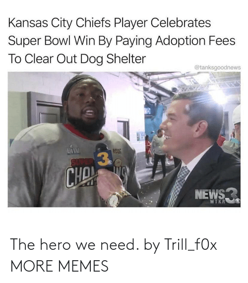 We Need: The hero we need. by Trill_f0x MORE MEMES