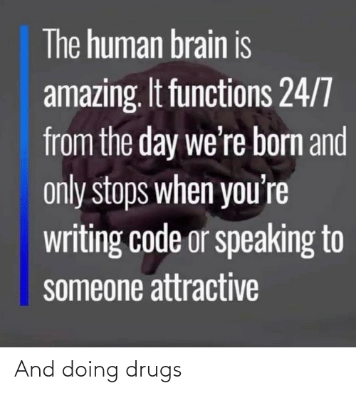 born: The human brain is  amazing. It functions 24/7  from the day we're born and  only stops when you're  writing code or speaking to  someone attractive And doing drugs