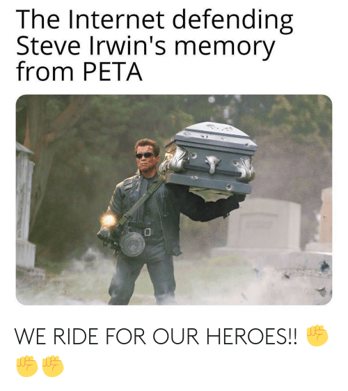 Internet, Memes, and Peta: The Internet defending  Steve Irwin's memory  from PETA WE RIDE FOR OUR HEROES!! ✊✊✊