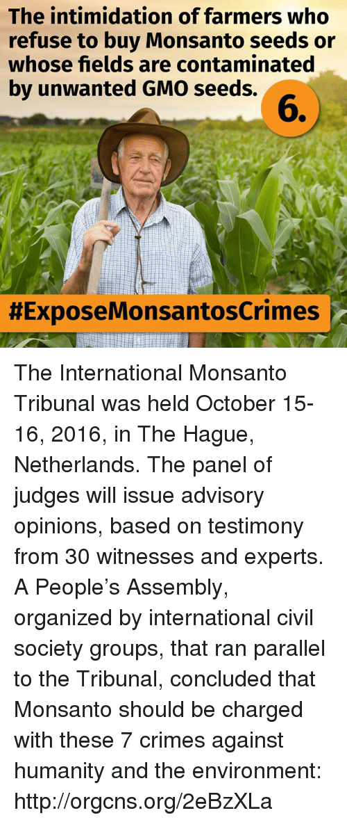 Opinionating: The intimidation of farmers who  refuse to buy Monsanto seeds or  whose fields are contaminated  by unwanted GMO seeds.  HExposeMonsantoscrimes ir The International Monsanto Tribunal was held October 15-16, 2016, in The Hague, Netherlands. The panel of judges will issue advisory opinions, based on testimony from 30 witnesses and experts. A People's Assembly, organized by international civil society groups, that ran parallel to the Tribunal, concluded that Monsanto should be charged with these 7 crimes against humanity and the environment: http://orgcns.org/2eBzXLa