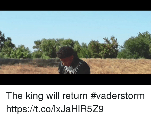 Memes, 🤖, and King: The king will return #vaderstorm https://t.co/lxJaHlR5Z9