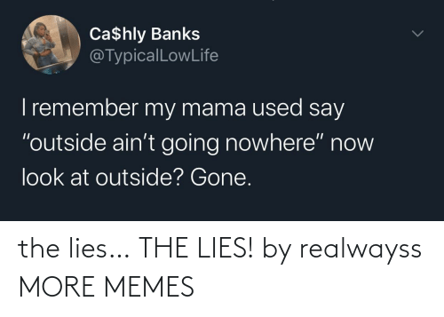 The Lies: the lies… THE LIES! by realwayss MORE MEMES