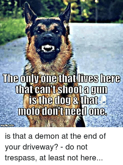 Mofoe: The  lives here  only one that Shoota gun  that CantS  isthedog that  mofo dollit need one  imgfip. is that a demon at the end of your driveway? - do not trespass, at least not here...