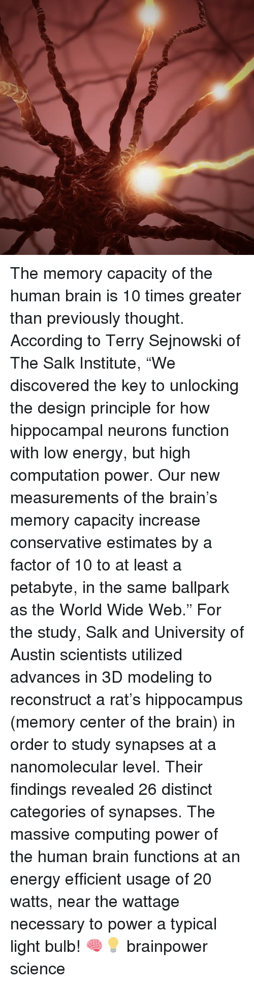 """computing: The memory capacity of the human brain is 10 times greater than previously thought. According to Terry Sejnowski of The Salk Institute, """"We discovered the key to unlocking the design principle for how hippocampal neurons function with low energy, but high computation power. Our new measurements of the brain's memory capacity increase conservative estimates by a factor of 10 to at least a petabyte, in the same ballpark as the World Wide Web."""" For the study, Salk and University of Austin scientists utilized advances in 3D modeling to reconstruct a rat's hippocampus (memory center of the brain) in order to study synapses at a nanomolecular level. Their findings revealed 26 distinct categories of synapses. The massive computing power of the human brain functions at an energy efficient usage of 20 watts, near the wattage necessary to power a typical light bulb! 🧠💡 brainpower science"""