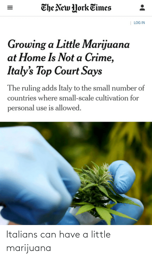 court: The New York Times  | LOG IN  Growing a Little Marijuana  at Home Is Not a Crime,  Italy's Top Court Says  The ruling adds Italy to the small number of  countries where small-scale cultivation for  personal use is allowed.  II Italians can have a little marijuana