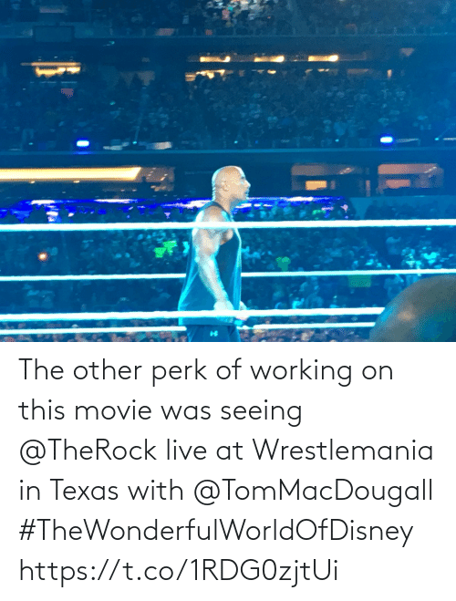 Other: The other perk of working on this movie was seeing @TheRock live at Wrestlemania in Texas with @TomMacDougall #TheWonderfulWorldOfDisney https://t.co/1RDG0zjtUi