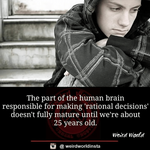 human: The part of the human brain  responsible for making 'rational decisions'  doesn't fully mature until we're about  25 years old.  Weird World  @ weirdworldinsta