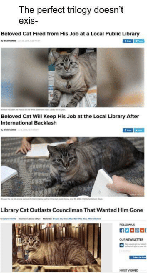 Library, International, and Cat: The perfect trilogy doesn't  exis  Beloved Cat Fired from His Job at a Local Public Library  ax  Beloved Cat Will Keep His Job at the Local Library After  International Backlash  Library Cat Outlasts Councilman That Wanted Him Gone  FOLLOW US  OUR NEWSLETTER  MOST VIEWED