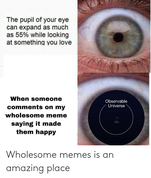 Wholesome Memes: The pupil of your eye  can expand as much  as 55% while looking  at something you love  When someone  Observable  Universe  comments on my  wholesome meme  saying it made  them happy Wholesome memes is an amazing place