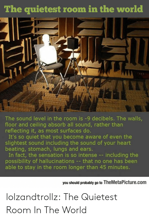 Tumblr, Blog, and Heart: The quietest room in the world  The sound level in the room is -9 decibels. The walls  floor and ceiling absorb all sound, rather tharn  reflecting it, as most surfaces do.  It's so quiet that you become aware of even the  slightest sound including the sound of your heart  beating, stomach, lungs and ears.  In fact, the sensation is so intense --including the  possibility of hallucinations - that no one has been  able to stay in the room longer than 45 minutes.  you should probably go to TheMetaPicture.com lolzandtrollz:  The Quietest Room In The World