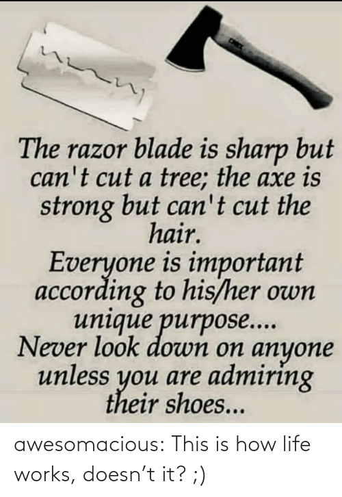 Blade, Life, and Shoes: The razor blade is sharp but  can't cut a tree; the axe is  strong but can't cut the  hair.  Everyone is important  according to his/her own  unique purpose...  Never look down on anyone  unless you are admiring  their shoes... awesomacious:  This is how life works, doesn't it? ;)