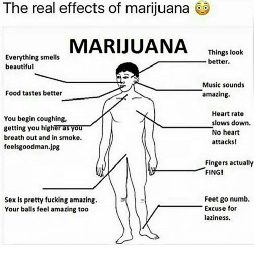 fing: The real effects of marijuana  MARIJUANA  Things look  Everything smells  better.  beautiful  Music sounds  Food tastes better  amazing  Heart rate  You begin coughing,  slows down.  getting you highera3VO  No heart  breath out and in smoke.  attacks!  feelsgoodman.jpg  Fingers actually  FING!  Feet go numb.  Sex is pretty fucking amazing.  Excuse for  Your balls feel amazing too  laziness.