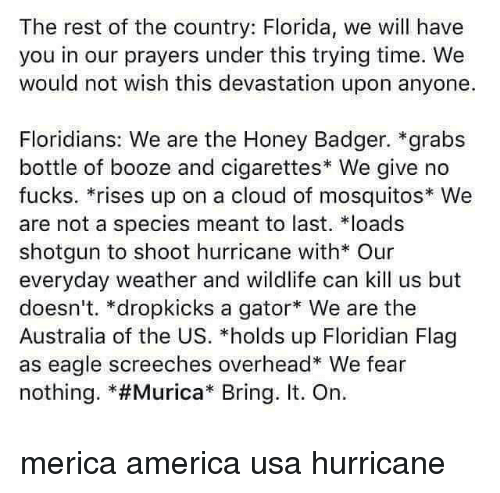 """America, Memes, and Australia: The rest of the country: Florida, we will have  you in our prayers under this trying time. We  would not wish this devastation upon anyone.  Floridians: We are the Honey Badger. *grabs  bottle of booze and cigarettes* We give no  fucks. *rises up on a cloud of mosquitos We  are not a species meant to last. loads  shotgun to shoot hurricane with* Our  everyday weather and wildlife can kill us but  doesn't. *dropkicks a gator We are the  Australia of the US. *holds up Floridian Flag  as eagle screeches overhead* We fear  nothing. *#Murica"""" Bring. It. On. merica america usa hurricane"""