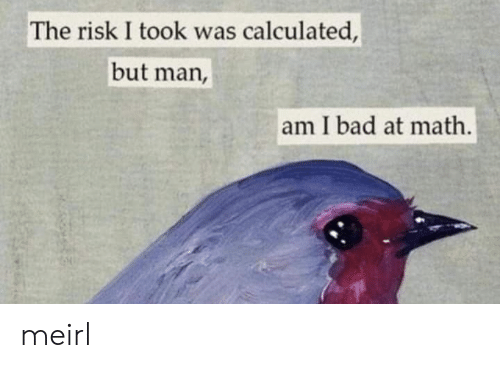Calculated: The risk I took was calculated,  but man,  am I bad at math. meirl