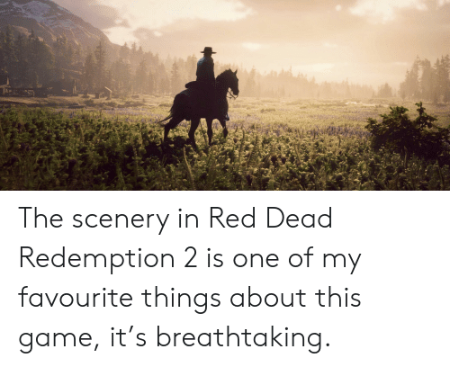 Game, Red Dead Redemption, and Red Dead: The scenery in Red Dead Redemption 2 is one of my favourite things about this game, it's breathtaking.