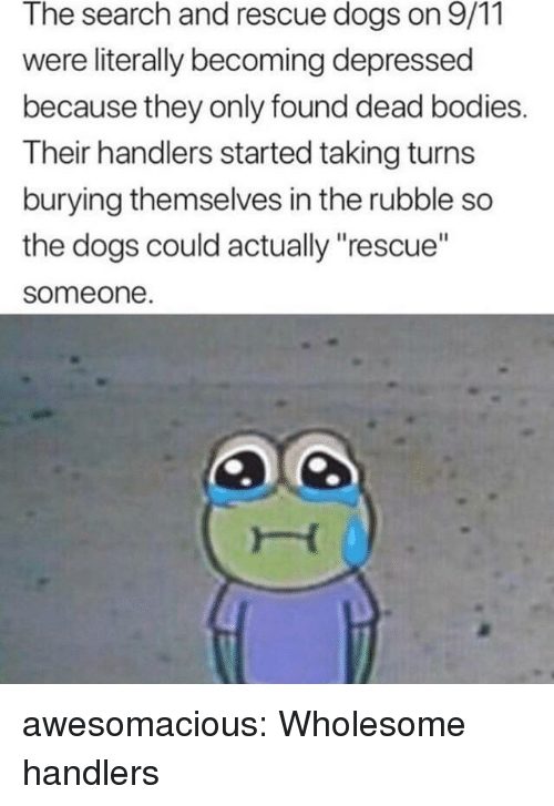 "9/11, Bodies , and Dogs: The search and rescue dogs on 9/11  were literally becoming depressed  because they only found dead bodies.  Their handlers started taking turns  burying themselves in the rubble so  the dogs could actually ""rescue""  someone awesomacious:  Wholesome handlers"