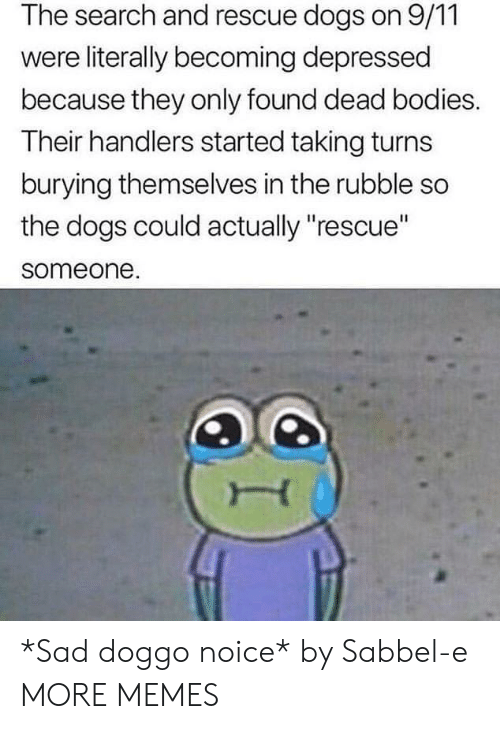 """9/11, Bodies , and Dank: The search and rescue dogs on 9/11  were literally becoming depressed  because they only found dead bodies.  Their handlers started taking turns  burying themselves in the rubble so  the dogs could actually """"rescue""""  someone. *Sad doggo noice* by Sabbel-e MORE MEMES"""
