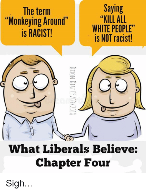 "all white: The term  ""Monkeying Around""  is RACIST!  Saying  ""KILL ALL  WHITE PEOPLE""  is NOT racist!  What Liberals Believe:  Chapter Four Sigh..."