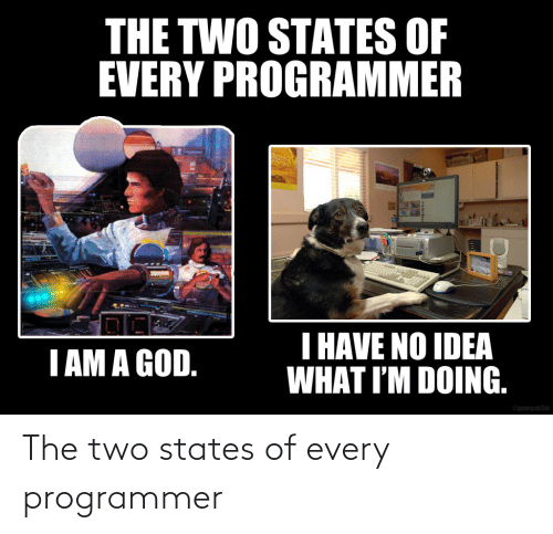 states: The two states of every programmer