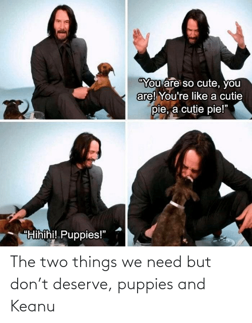 need: The two things we need but don't deserve, puppies and Keanu