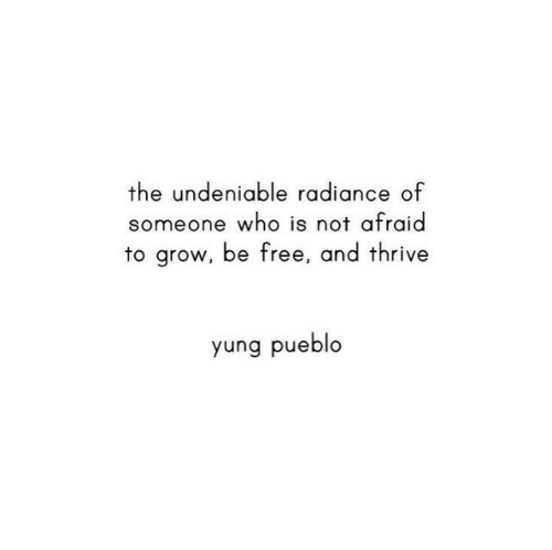 Free, Who, and Grow: the undeniable radiance of  someone who is not afraid  to grow, be free, and thrive  yung pueblo