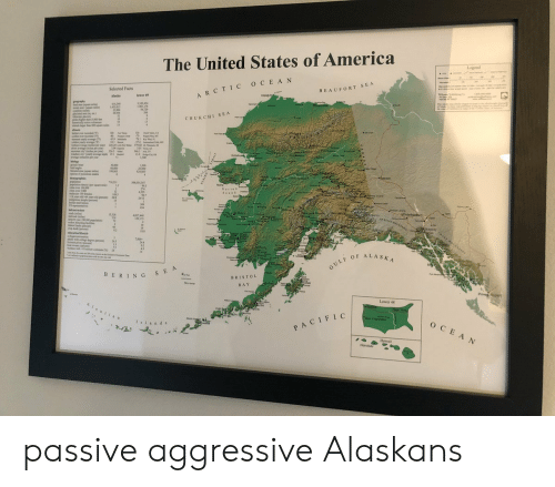 """states of america: The United States of America  Legend  Selected Facts  BEAUFORT SEA  ARCTIC OCEAN  tpiaba  lewer 49  Alasks  Ugiagv  graphy  s40  LASSAL  L18244  11,17%  54.729  266  Perin  CHUKCHI SEA  s ighr  dnAI b  51  spare mil  100 at  u  ami  d  yly ege)  w  314  P 379 02  226 24 L  1%  si ag ide per ye  ryea  s pr  ww he per y  waded doet wege p  ange d pr you  30 A  319 u N KR  1 300  11  G  Kotasbue  g  y m  beld egle  000  6,000  1993  1,300  21.000  $24 061  of p  k  +Deeson  dngraphi  TI2  30x035 307  dy p st  Nome  99.3  Nortos  Seusd  500e  per 100 al  pea 64 yous ald c  12  108 30  4555  96.7  24/13  Leme  15  309  434  arirect  Uary  Whitehppe  ad  1532  4027440  spe 100000 ppation  md cng  4  a wihg  7000  244  363  4""""  14  GULF OF ALASKA  BERING SEA  BRISTOL  BAY  Prince  Lower 48  AIestias  Cald  Now York  San Francico  Islands  OCEAN  PACIFIC  Hawa  Honolul passive aggressive Alaskans"""