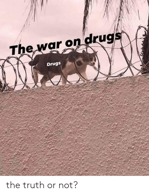 war on drugs: The war on drugs  Drugs the truth or not?