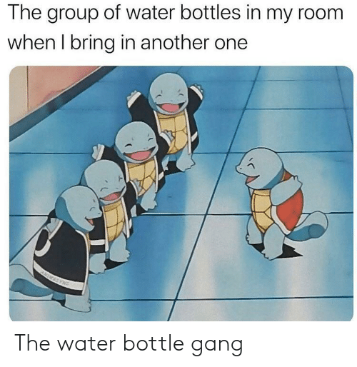 Gang: The water bottle gang