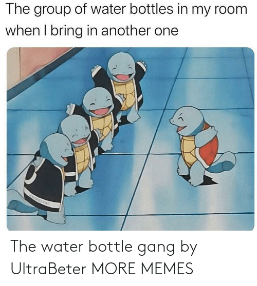 Gang: The water bottle gang by UltraBeter MORE MEMES