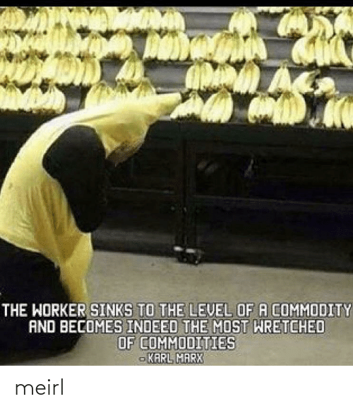 level: THE WORKER SINKS TO THE LEVEL OF A COMMODITY  AND BECOMES INDEED THE MOST WRETCHED  OF COMMODITIES  - KARL MARX meirl