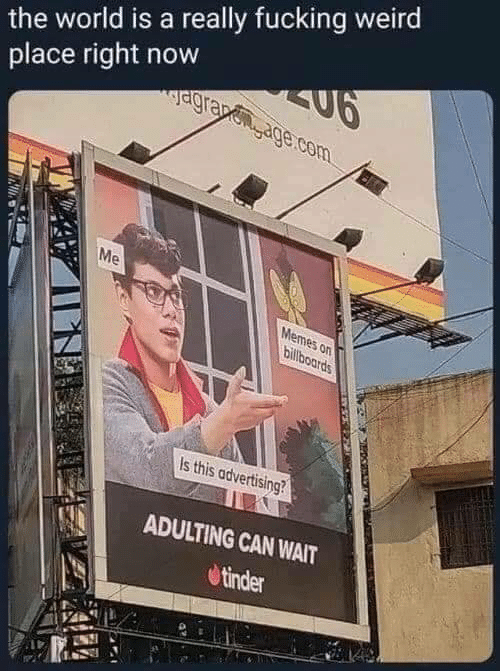 Fucking, Memes, and Tinder: the world is a really fucking weird  place right now  agra age.com  Me  Memes on  billboards  Is this advertising?  ADULTING CAN WAIT  tinder