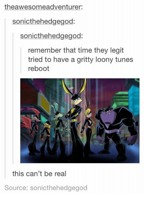 Funny, Time, and ReBoot: theawesomeadventurer:  sonicthehedgegod:  sonicthehedgegod:  remember that time they legit  tried to have a gritty loony tunes  reboot  this can't be real  Source: sonicthehedgegod