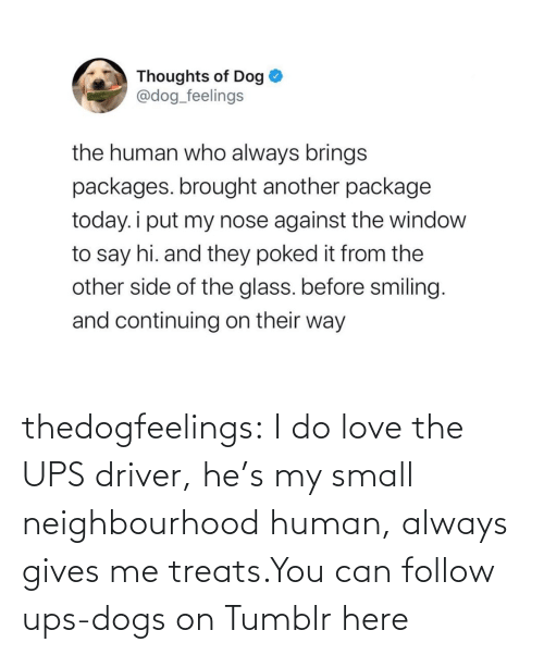 human: thedogfeelings:  I do love the UPS driver, he's my small neighbourhood human, always gives me treats.You can follow ups-dogs on Tumblr here
